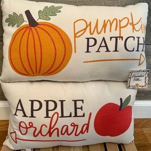 Target Bullseye Playground Accents - New Target Double Sided Pillows